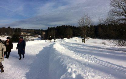 Braunkohlwanderung mit dem TTC Grün-Gelb in weißer Winterlandschaft